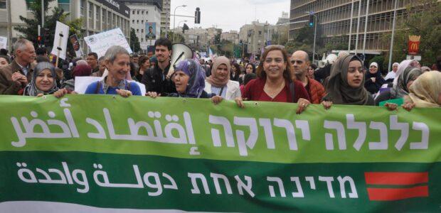 הכיבוש מוביל לאפרטהייד, פתרון שתי המדינות מנציח את המצב הקיים. דרושה פרדיגמה חדשה - מדינה אחת לשני העמים, הישראלי והפלסטיני, על בסיס כלכלה ירוקה ושיתופית.